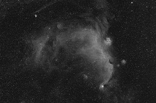 IC 2177 - the Seagull Nebula in Ha