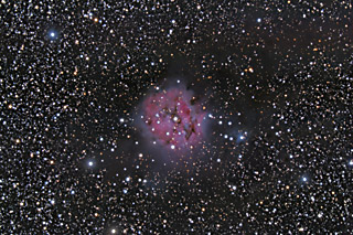 IC 5146 - The Cocoon Nebula in Cygnus