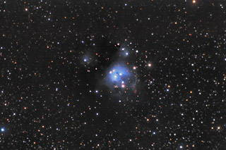 NGC 7129 - A Reflection Nebula in Cepheus